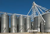 stock photo of silo  - Huge metal grain storage silos gleam in the sun - JPG