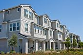 stock photo of row trees  - A row of new townhomes  - JPG