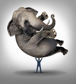 foto of domination  - Leadership solutions business concept with a take charge businessman lifting a huge elephant as a symbol of a strong leader with courage and determination to release the power within and achieve what is impossible - JPG