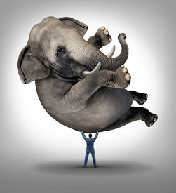 picture of male-domination  - Leadership solutions business concept with a take charge businessman lifting a huge elephant as a symbol of a strong leader with courage and determination to release the power within and achieve what is impossible - JPG