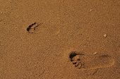 Couple Footsteps