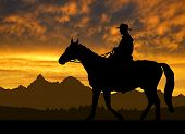 stock photo of wild horses  - Silhouette cowboy with horse in the sunset  - JPG
