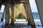 Beneath Fishing Pier
