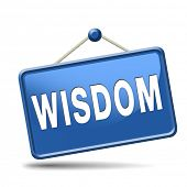 wisdom education and knowledge online learning wisdom icon wisdom button
