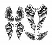 Set Of Wings