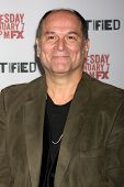 LOS ANGELES - JAN 6:  John Kapelos at the