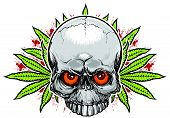Skull and weed