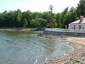 Petrodvorets. Coast Of Gulf Of Finland And Palace Of Monplaisir