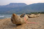 Makoro boats on Chitimba beach, Lake Malawi, Malawi, Africa