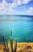 Seashore at Pigeon Island, Saint Lucia, Caribbean