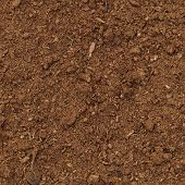Peat Turf Macro Closeup, Large Detailed Brown Organic Humus Soil Background Pattern