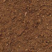 Peat Turf Macro Closeup, Large Detailed Brown Organic Humus Soil Background Pattern