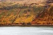 Autumn colours on the Island of Skye, Scotland, Europe