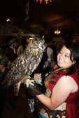 MUSKOGEE, OK - MAY 24: A handler shows a large owl trained to perform at the Oklahoma 19th annual Re