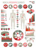 Medical infographics elements. Human body with internal organs