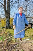 pic of hoe  - Elderly woman wearing blue coat gardening with a hoe - JPG