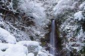 Cachoeira de Yoro