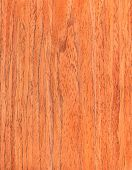 Walnut Wooden Texture, Wood Grain, Natural Rural Tree Background