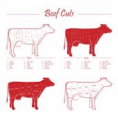 picture of beef shank  - Scheme american cuts of beef  - JPG