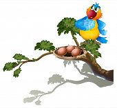 Illustration of a parrot watching the eggs in the nest on a white background