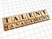 Talent Management In Golden Cubes