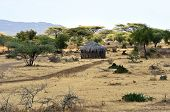 picture of mud-hut  - African house made of mud and straw in Kenya - JPG