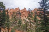 Overcast Sky At Bryce Canyon
