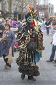 Mardi Gras Bird Man