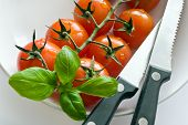 Fresh Red Tomatoes With Basil Leaf And Knife