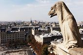 stock photo of gargoyles  - Gargoyle looking at Paris - JPG