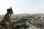 Paris, France, gargoyles in Notre Dame Cathedral.