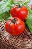 red tomatoes on a basket with salad
