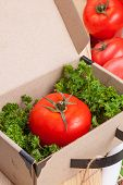 red tomato in the box with parsley