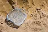 Clam Shell Shaped Basket
