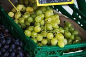Green And Blue Grapes
