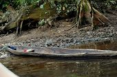 Dugout Canoe In Cuyabeno Reserve!