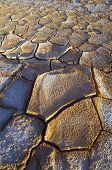 Cracks in mud, Belchite, Aragon, Spain.
