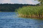 Lake Baluosas