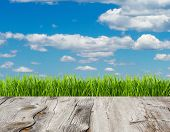 Green Grass And Blue Sky On Wood Floor Background.