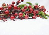 Christmas berries decoration in snow