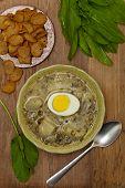 foto of sorrel  - Sorrel soup with egg and greens - JPG