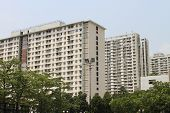 pic of public housing  - public housing estates in Hong Kong for the poor - JPG