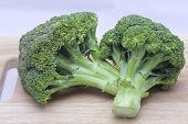picture of cruciferous  - Fresh broccoli on white with soft shadow - JPG