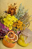 image of tansy  - Medicinal herbs with honey calendula oats immortelle flower tansy herb wild rose dried lemon - JPG