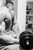 image of dumbbell  - Strong and muscular guy with dumbbell - JPG