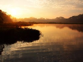 picture of rainforest  - An orange sunrise with some light fog over the water of the Tambopata river during sunrise in the Amazon rainforest in eastern Peru near the border with Brazil - JPG