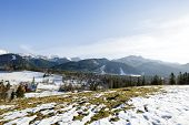 stock photo of population  - Tatra Mountains seen from the sparsely populated areas of the city Zakopane - JPG