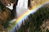 Yellowstone Rainbow