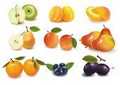 Ilustración de vector fotorrealistas. Grupo grande de fruta madura.