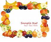 Fruit design background. Vector.